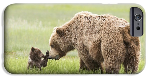 Bonding iPhone Cases - Grizzly Bear _ursus Arctos Horribilis_ iPhone Case by Daisy Gilardini