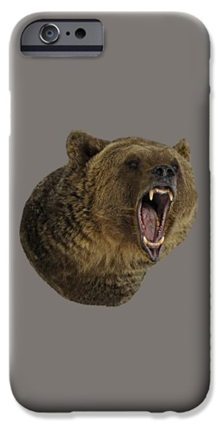 Animals Photographs iPhone Cases - Grizzly Bear iPhone Case by Wildlife Fine Art