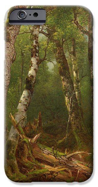 Rural Schools iPhone Cases - Group of Trees iPhone Case by Asher Brown Durand