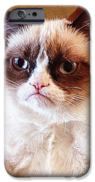 Cute Puppy iPhone Cases - Grumpy Cat iPhone Case by Queso Espinosa