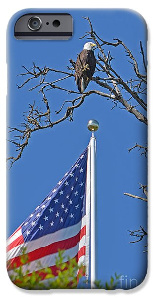 Old Glory iPhone Cases - Guardian iPhone Case by Bob Mead