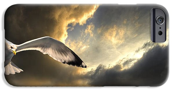 Drama iPhone Cases - Gull With Approaching Storm iPhone Case by Meirion Matthias