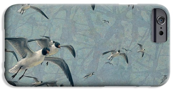 Animals Drawings iPhone Cases - Gulls iPhone Case by James W Johnson