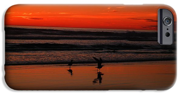 Sea Birds iPhone Cases - Gulls on the beach at sundown iPhone Case by Jeff  Swan