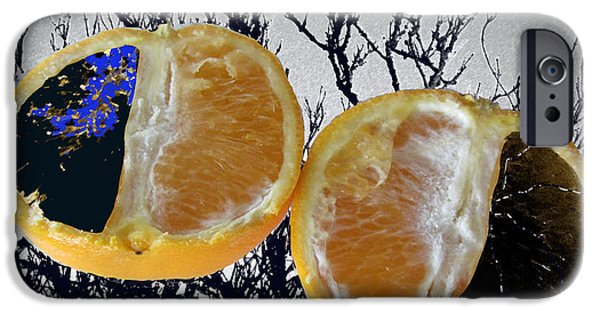 Nature Abstracts iPhone Cases - Half Oranges iPhone Case by Rosamund Smears