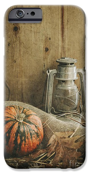 Agriculture Pyrography iPhone Cases - Halloween Compositin iPhone Case by Jelena Jovanovic