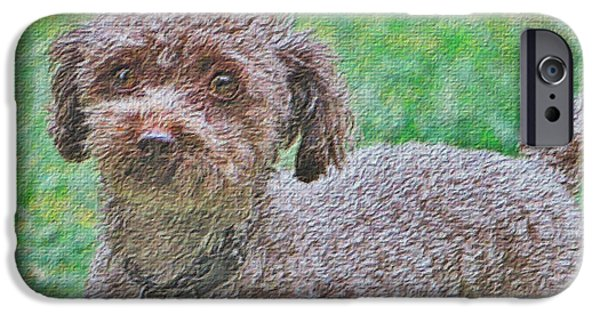 Puppies iPhone Cases - Handsome Poodle Pooch iPhone Case by Shelly Weingart