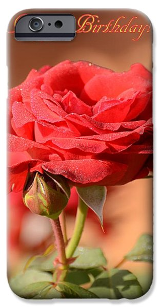 Floral Photographs iPhone Cases - Happy birthday rose iPhone Case by Zina Stromberg