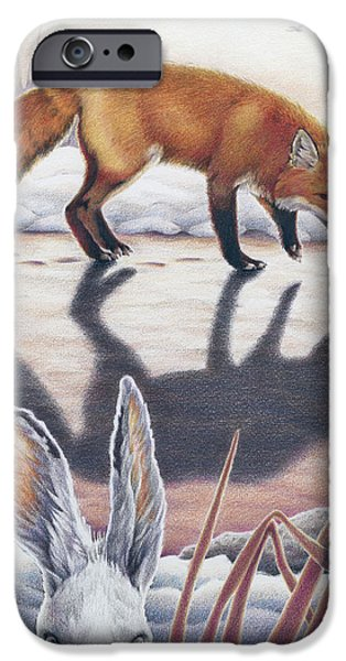 Preditor iPhone Cases - Hare Stands On End iPhone Case by Amy S Turner