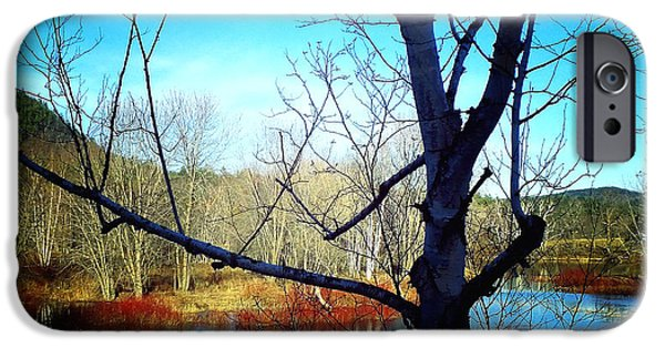 Androscoggin iPhone Cases - Harmony At Rumford Center iPhone Case by Mike Breau