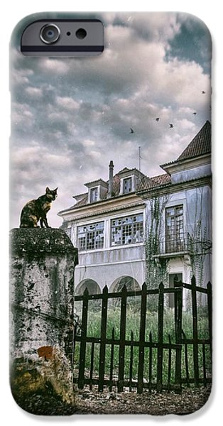Ruin iPhone Cases - Haunted House and a Cat iPhone Case by Carlos Caetano