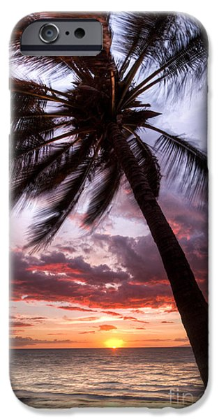 Amazing Sunset iPhone Cases - Hawaiian Coconut Palm Sunset iPhone Case by Dustin K Ryan