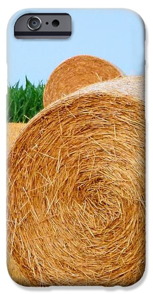 Hay bale with Crane iPhone Case by Michael Garyet