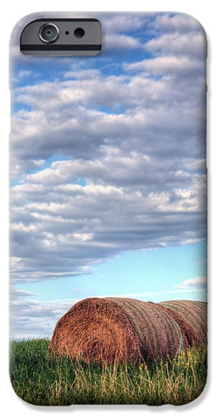 Hay It's Art iPhone Case by JC Findley