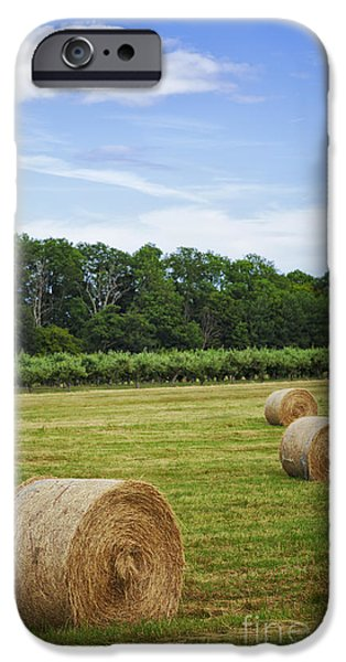 Haybale iPhone Cases - Haybales in a field iPhone Case by Sophie McAulay