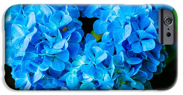 Garden Tapestries - Textiles iPhone Cases - Heart of Blue iPhone Case by James Hennis