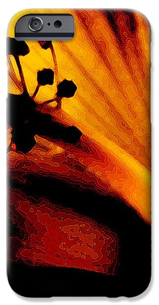 Heat iPhone Case by Linda Knorr Shafer