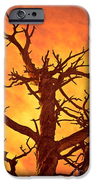Colorado Fires iPhone Cases - Hell iPhone Case by Charles Dobbs