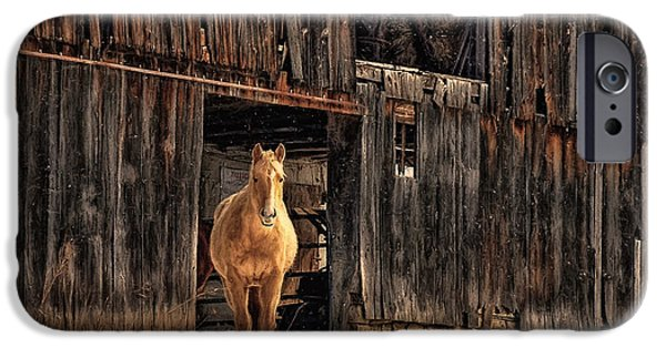 Barns In Snow iPhone Cases - Hello Sweetheart iPhone Case by Lois Bryan