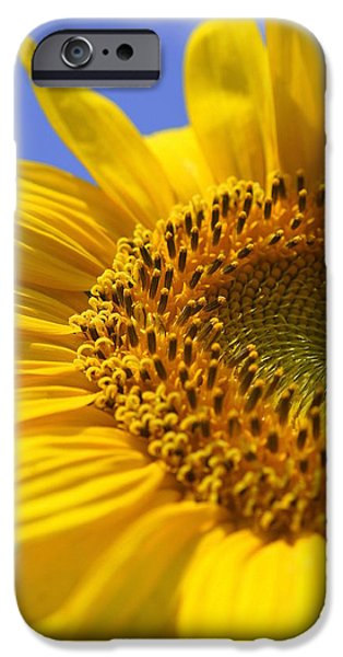 Crops iPhone Cases - Here Comes The Sun iPhone Case by Laurie Perry