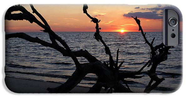 Ocean Sunset Pastels iPhone Cases - Here Fishy Fishy iPhone Case by Debbie May