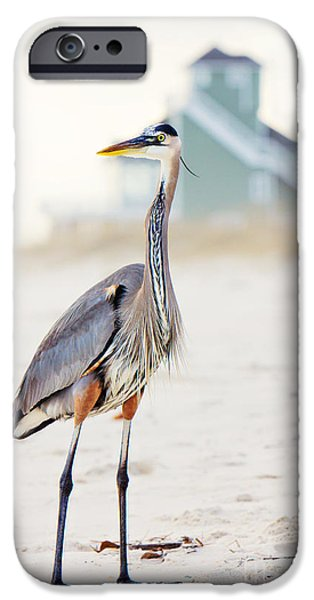 Beach Landscape iPhone Cases - Heron and the Beach House iPhone Case by Joan McCool