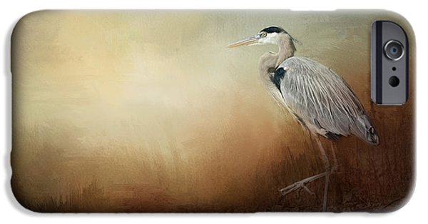Sea Birds iPhone Cases - Heron At The Inlet iPhone Case by Jai Johnson