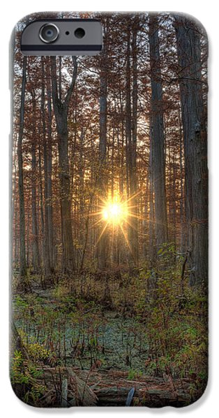 Heron Pond Sunrise iPhone Case by Steve Gadomski