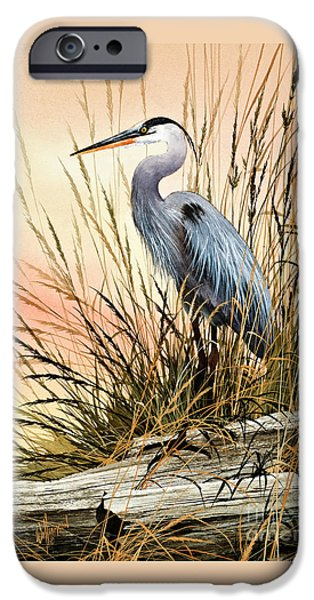 Heron Paintings iPhone Cases - Heron Sunset iPhone Case by James Williamson