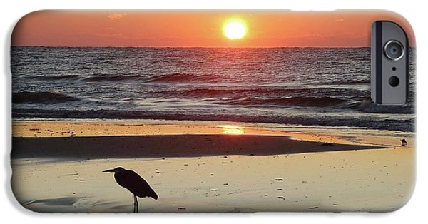 Micdesigns iPhone Cases - Heron Watching Sunrise iPhone Case by Michael Thomas