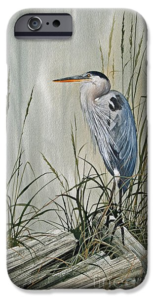 Heron Paintings iPhone Cases - Herons Quiet Rest iPhone Case by James Williamson
