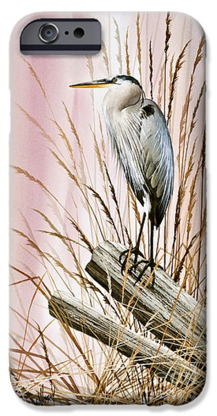 Heron Paintings iPhone Cases - Herons Watch iPhone Case by James Williamson