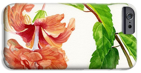 Hibiscus iPhone Cases - Hibiscus El Capitolio Square Design iPhone Case by Sharon Freeman