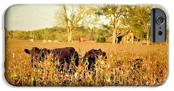 Old Barns iPhone Cases - Hiding In The Cotton iPhone Case by Jan Amiss Photography