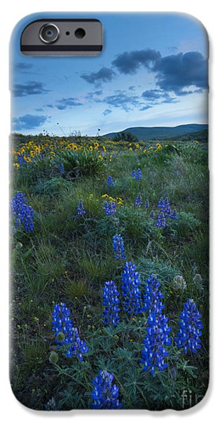Yakima Valley iPhone Cases - High Desert Dusk iPhone Case by Mike Dawson