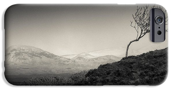 Beautiful Scenery iPhone Cases - Highland Tree iPhone Case by Dave Bowman
