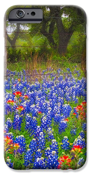 Pasture Scenes Photographs iPhone Cases - Hill Country Forest iPhone Case by Inge Johnsson