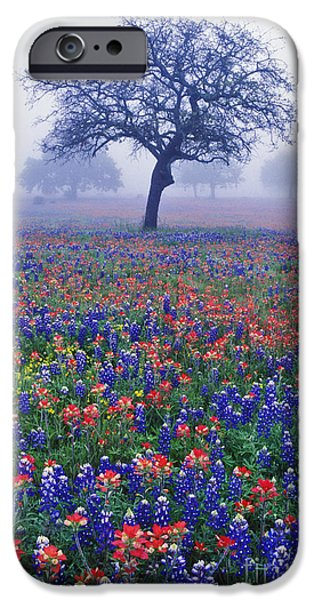 Meadow Photographs iPhone Cases - Hill Country Mist - FS000062 iPhone Case by Daniel Dempster