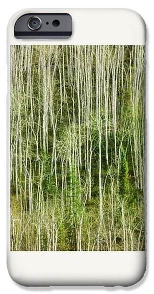 hillside forest iPhone Case by Priska Wettstein