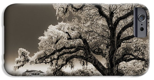 Mansion iPhone Cases - Historic Drayton Hall in Charleston South Carolina Live Oak Tree iPhone Case by Dustin K Ryan