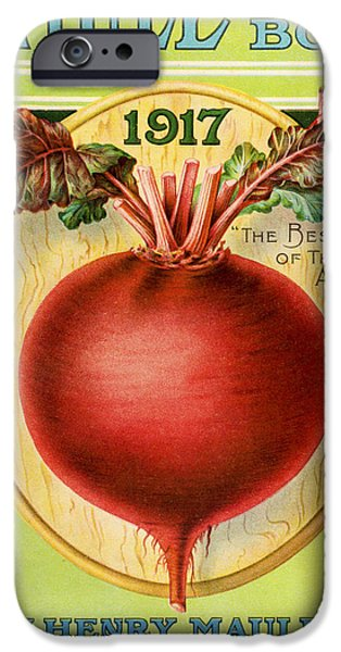 Agriculture Drawings iPhone Cases - Historic Maules Seed Book iPhone Case by Vintage Design Pics