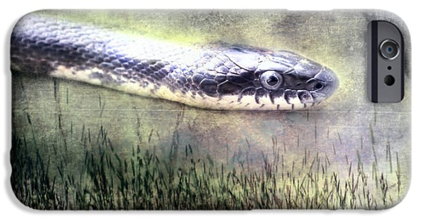 Invertebrates Mixed Media iPhone Cases - Hith Hith A Snake iPhone Case by Bellesouth Studio