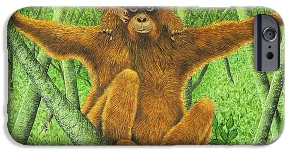 Ape iPhone Cases - Hnag On In There iPhone Case by Pat Scott