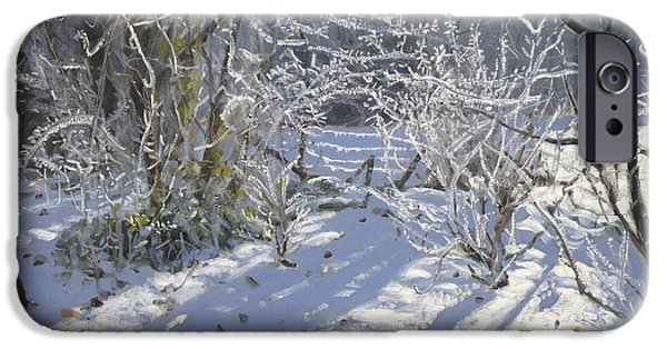 Frigid iPhone Cases - Hoar frost iPhone Case by Andrew Macara