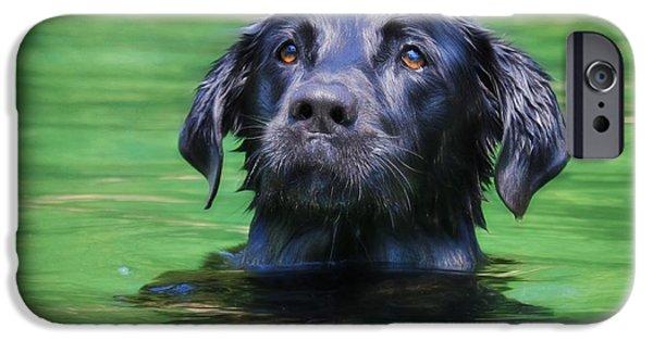 Labrador Retriever Digital Art iPhone Cases - Hobie 1 iPhone Case by Lori Deiter
