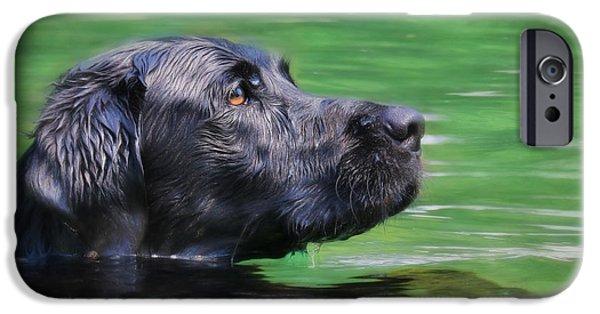 Labrador Retriever Digital Art iPhone Cases - Hobie 2 iPhone Case by Lori Deiter