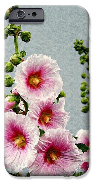 Hollyhock iPhone Cases - Hollyhocks in Schierstein 3 iPhone Case by Sarah Loft