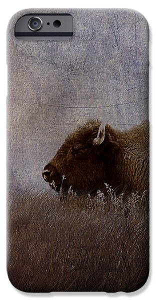 Home On The Range iPhone Case by Ron Jones