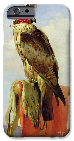 Falcon iPhone Cases - Hooded Falcon iPhone Case by Sir Edwin Landseer