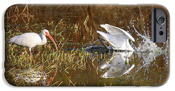 Action Shot iPhone Cases - Hope You Got That iPhone Case by Carol Groenen